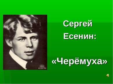 Сергей Есенин: «Черёмуха»