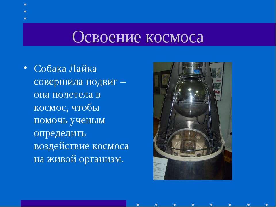 Освоение космоса Собака Лайка совершила подвиг – она полетела в космос, чтобы...