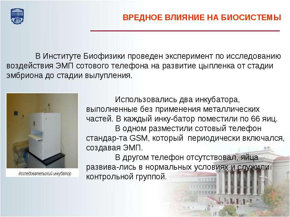 В Институте Биофизики проведен эксперимент по исследованию воздействия ЭМП со...