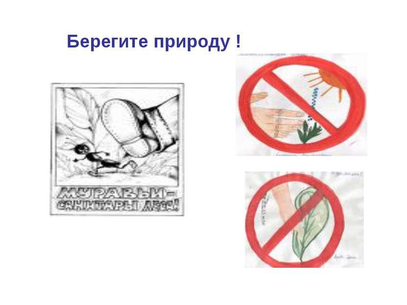 Берегите природу !