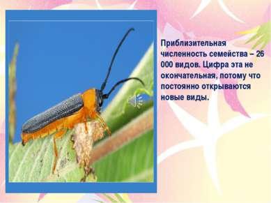 Приблизительная численность семейства – 26 000 видов. Цифра эта не окончатель...