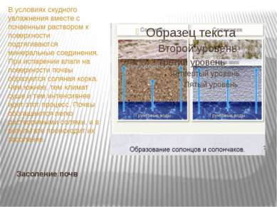 Засоление почв В условиях скудного увлажнения вместе с почвенным раствором к ...