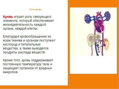 Роль крови Кровь играет роль связующего элемента, который обеспечивает жизнед...