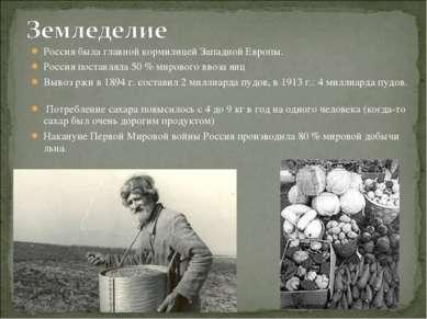 Россия была главной кормилицей Западной Европы. Россия поставляла 50 % мирово...