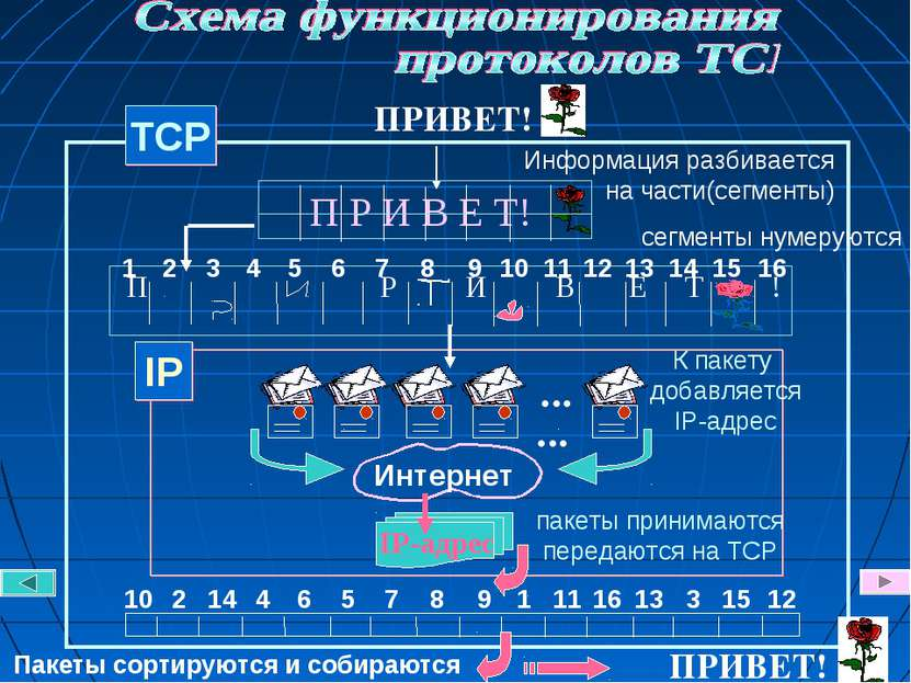 TCP Информация разбивается на части(сегменты) сегменты нумеруются К пакету до...