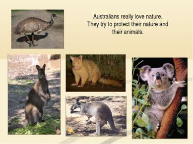 Australians really love nature. They try to protect their nature and their an...