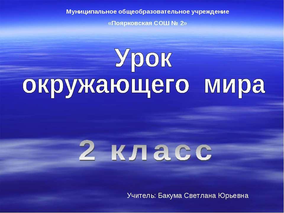 Муниципальное общеобразовательное учреждение «Поярковская СОШ № 2» Учитель: Б...