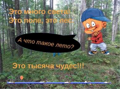 А что такое лето? Это много света! Это поле, это лес. Это тысяча чудес!!!