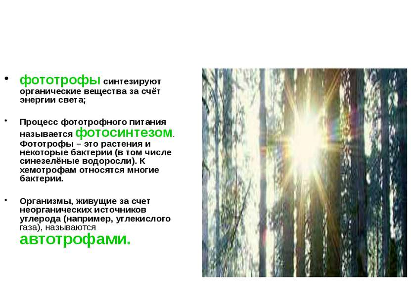 фототрофы синтезируют органические вещества за счёт энергии света; Процесс фо...