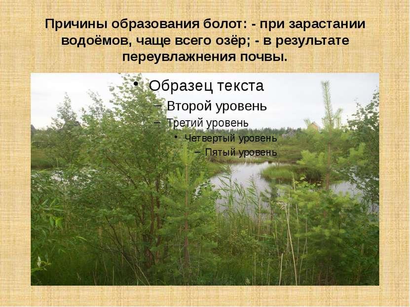 Причины образования болот: - при зарастании водоёмов, чаще всего озёр; - в ре...