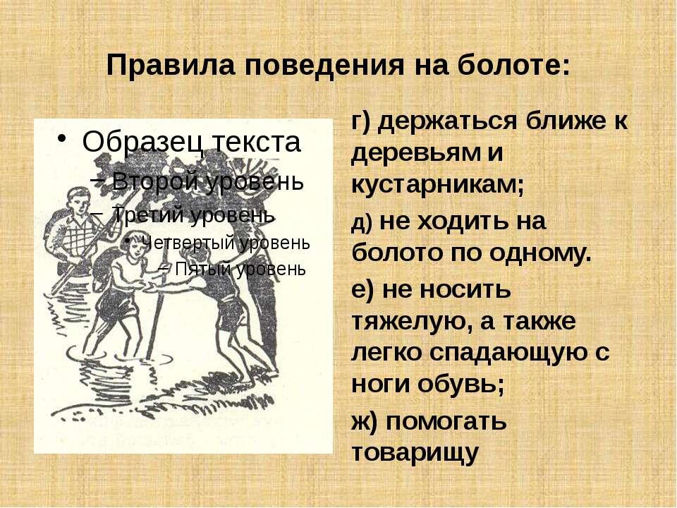 Правила поведения на болоте: г) держаться ближе к деревьям и кустарникам; д) ...