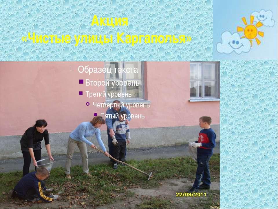 Акция «Чистые улицы Каргаполья»