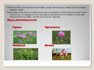 Флора очень богата. Цветут растения в разное время, поэтому с ранней весны до...
