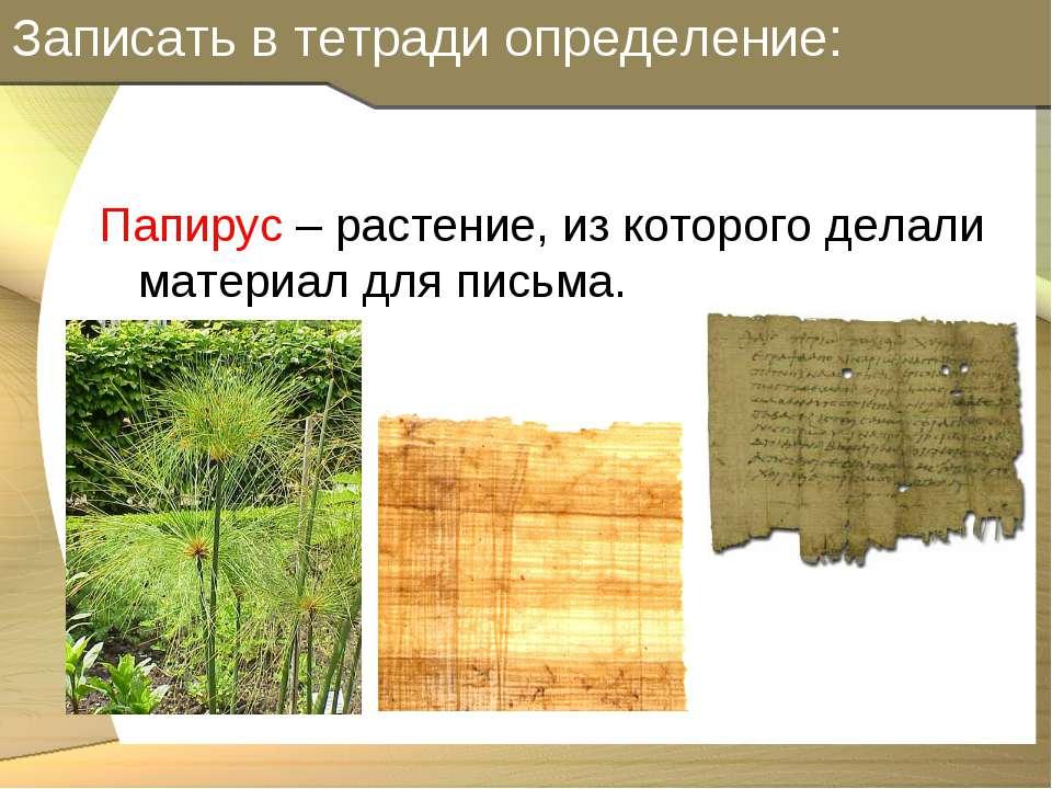Записать в тетради определение: Папирус – растение, из которого делали матери...