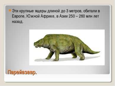 Парейазавр. Эти крупные ящеры длиной до 3 метров, обитали в Европе, Южной Афр...