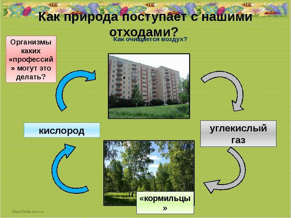 Как природа поступает с нашими отходами? Как очищается воздух? углекислый газ...