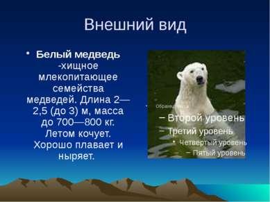 Внешний вид Белый медведь -хищное млекопитающее семейства медведей. Длина2—2...