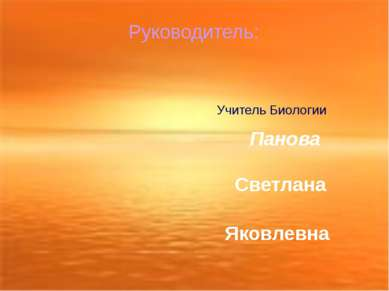 Руководитель: Учитель Биологии Панова Светлана Яковлевна