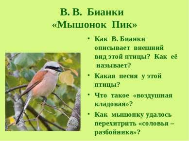 В. В. Бианки «Мышонок Пик» Как В. Бианки описывает внешний вид этой птицы? Ка...