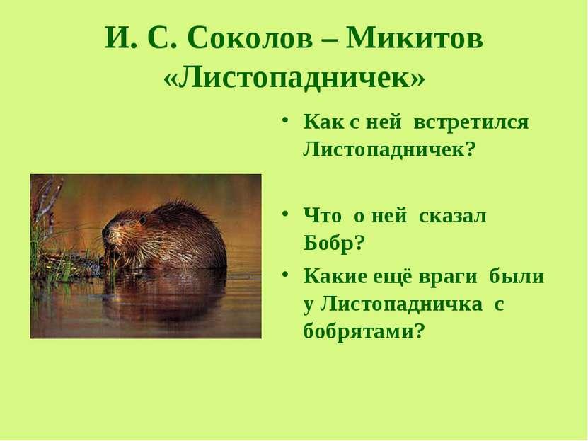 И. С. Соколов – Микитов «Листопадничек» Как с ней встретился Листопадничек? Ч...