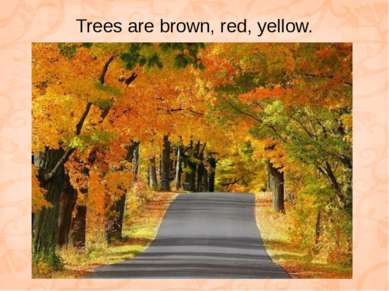 Trees are brown, red, yellow.