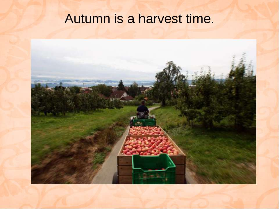 Autumn is a harvest time.