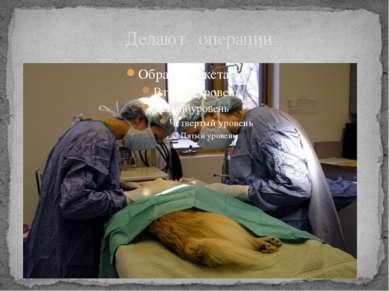 Делают операции