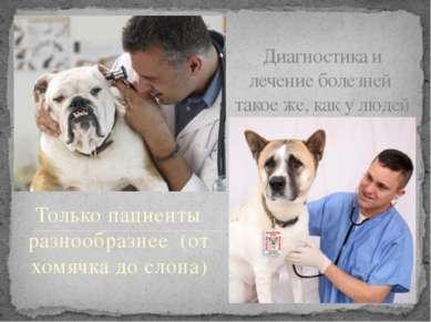 Диагностика и лечение болезней такое же, как у людей Только пациенты разнообр...