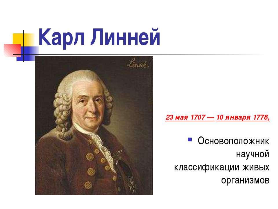 Карл Линней 23 мая 1707— 10 января 1778, Основоположник научной классификаци...