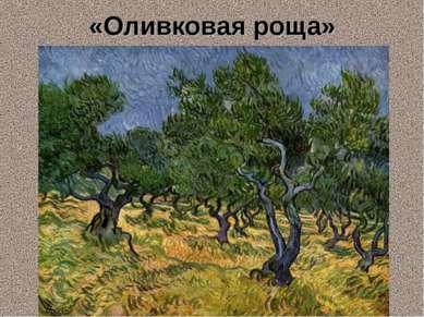 «Оливковая роща»