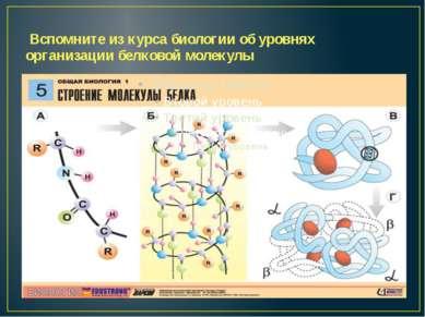 Вспомните из курса биологии об уровнях организации белковой молекулы