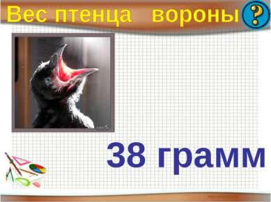 38 грамм