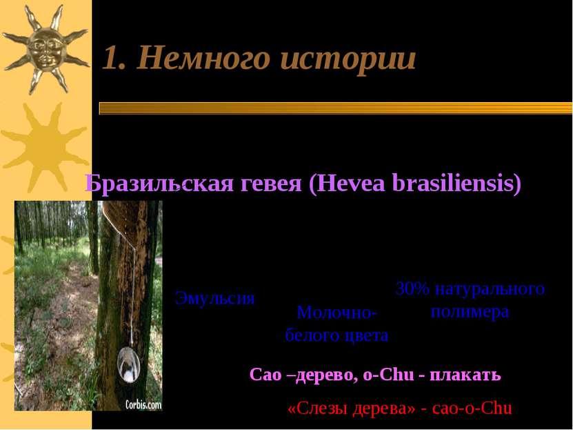 1. Немного истории Родина каучука – Центральная и Южная Америка. Бразильская ...