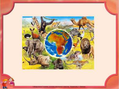 Животные Южной Америки разнообразны и неповторимы, как и она сама.