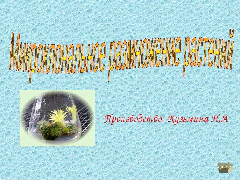 Производство: Кузьмина Н.А далее