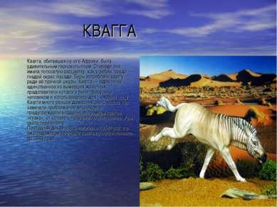 КВАГГА Квагга, обитавшая на юге Африки, была удивительным парнокопытным. Спер...