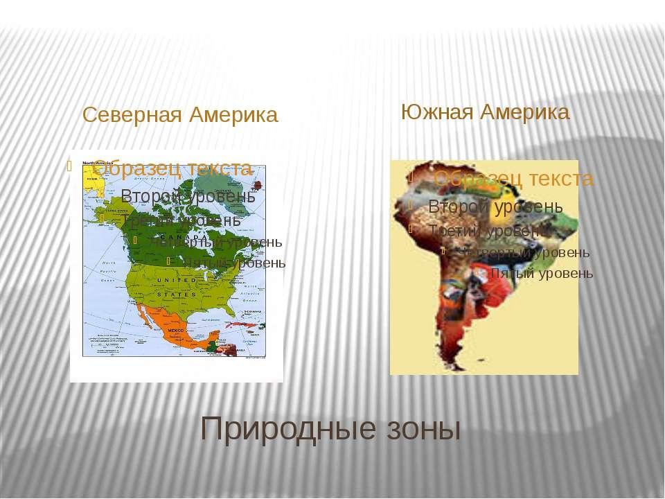 Природные зоны Северная Америка Южная Америка