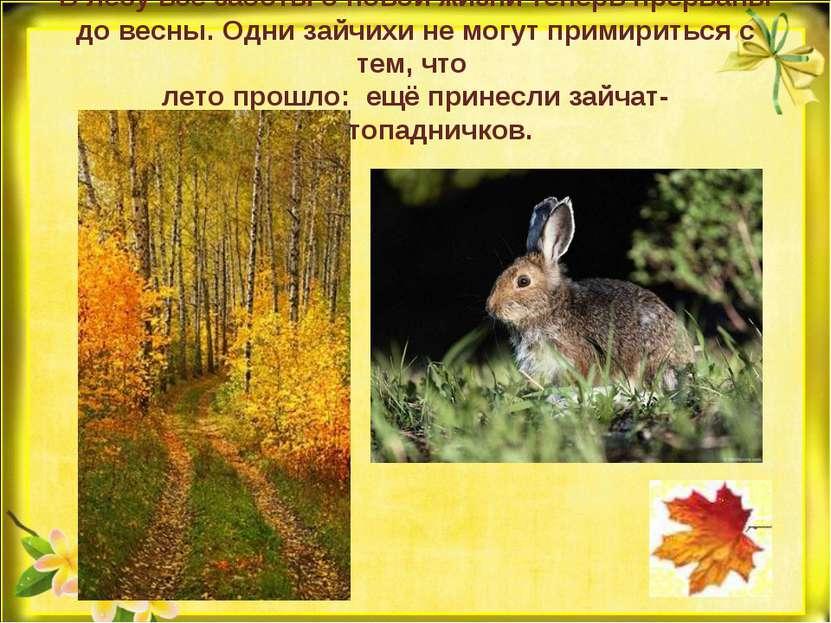 В лесу все заботы о новой жизни теперь прерваны до весны. Одни зайчихи не мог...