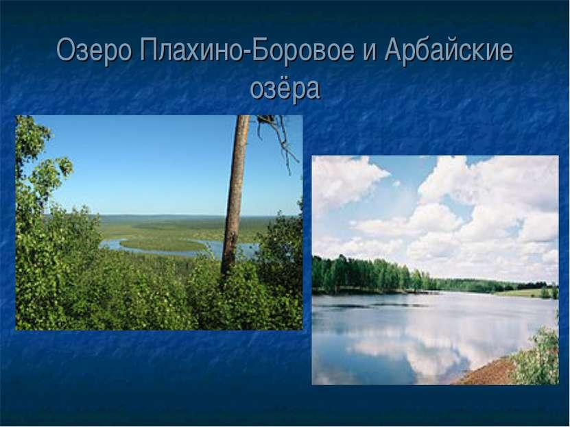 Озеро Плахино-Боровое и Арбайские озёра