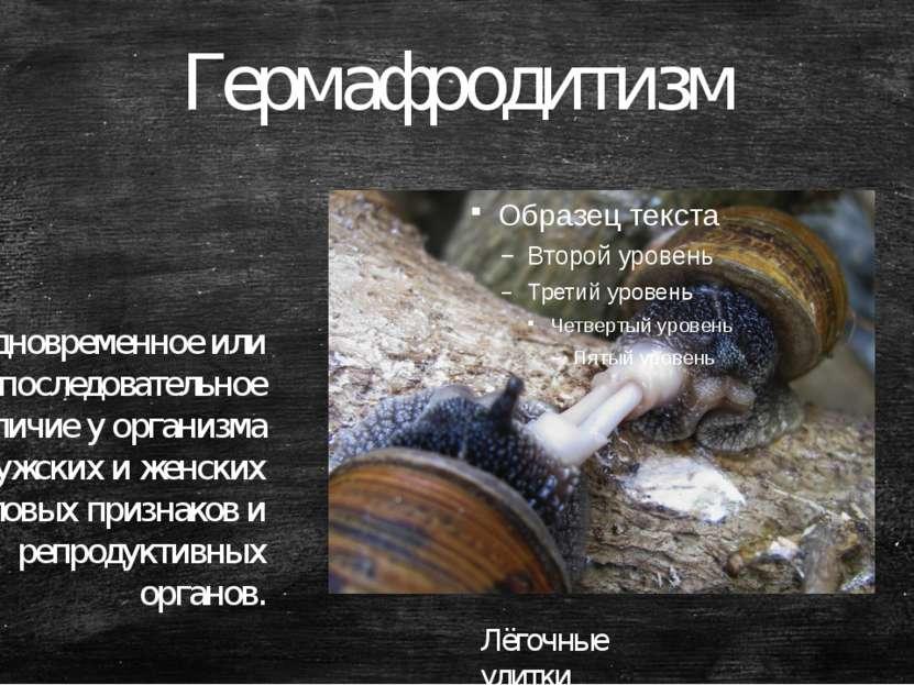 Гермафродитизм — одновременное или последовательное наличие у организма мужск...