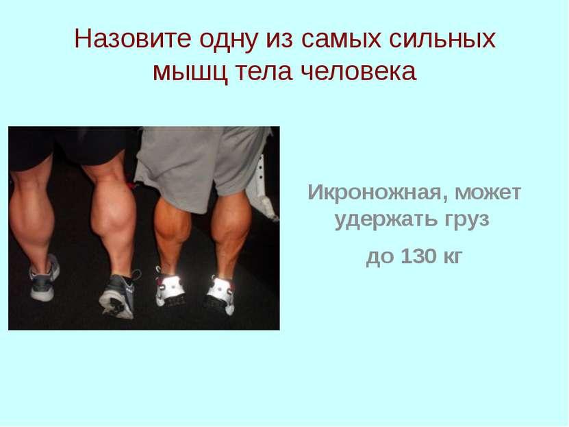Назовите одну из самых сильных мышц тела человека Икроножная, может удержать ...