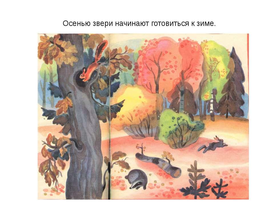Осенью звери начинают готовиться к зиме.