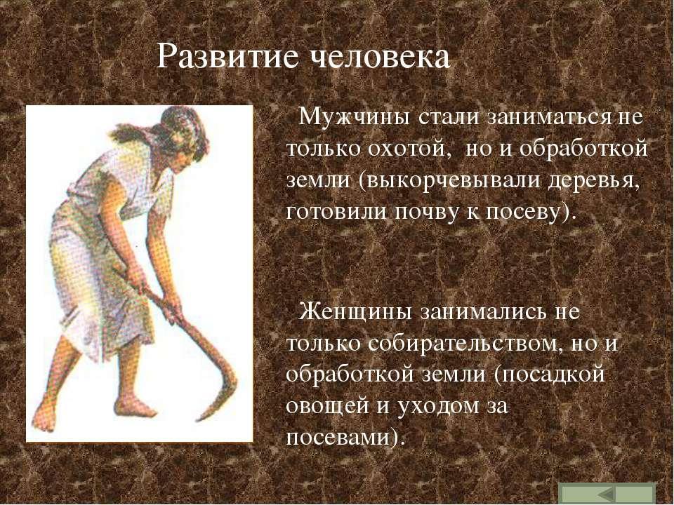 Развитие человека Мужчины стали заниматься не только охотой, но и обработкой ...