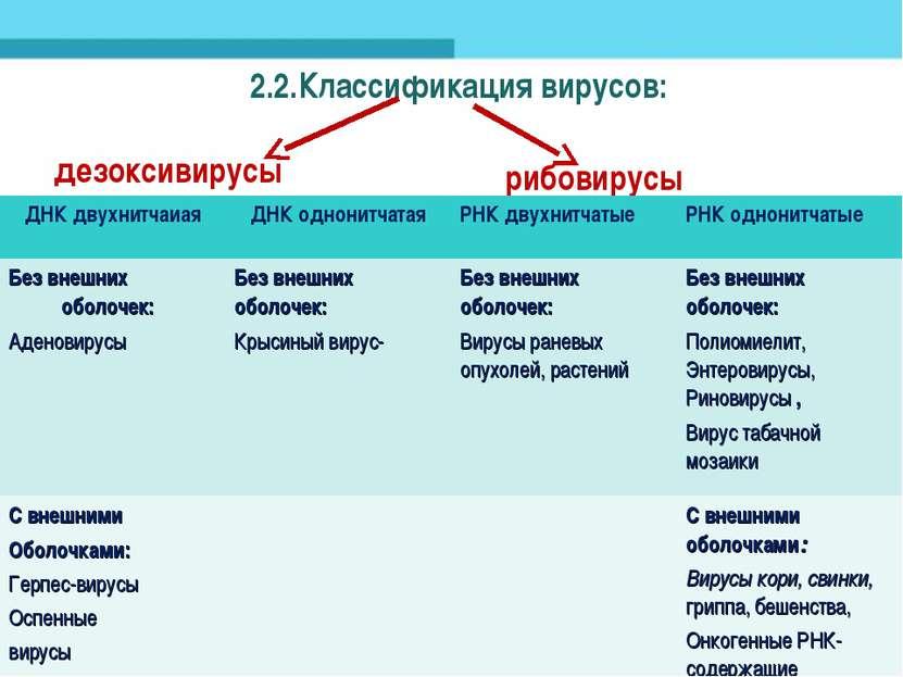 2.2.Классификация вирусов: дезоксивирусы рибовирусы ДНК двухнитчаиая ДНК одно...