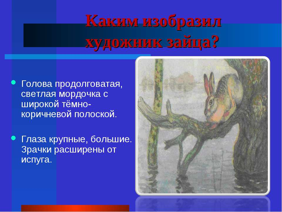 Каким изобразил художник зайца? Голова продолговатая, светлая мордочка с широ...