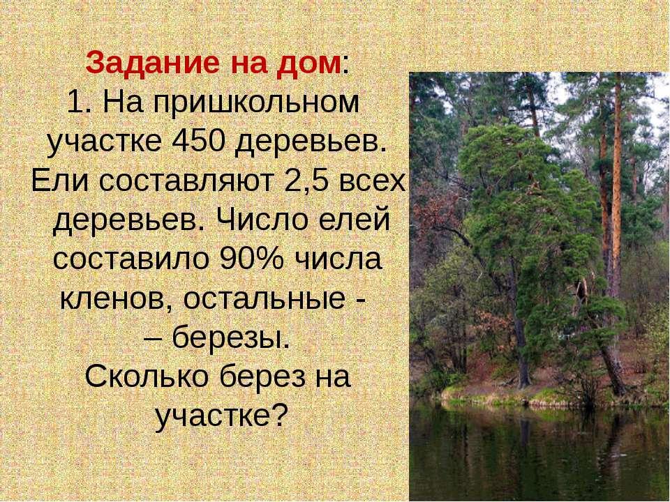 Задание на дом: 1. На пришкольном участке 450 деревьев. Ели составляют 2,5 вс...