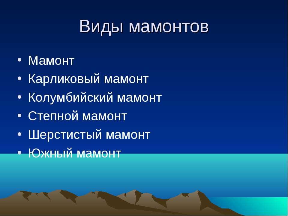 Виды мамонтов Мамонт Карликовый мамонт Колумбийский мамонт Степной мамонт Шер...