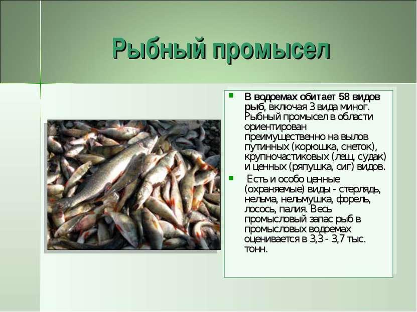 Рыбный промысел В водоемах обитает 58 видов рыб, включая 3 вида миног. Рыбный...