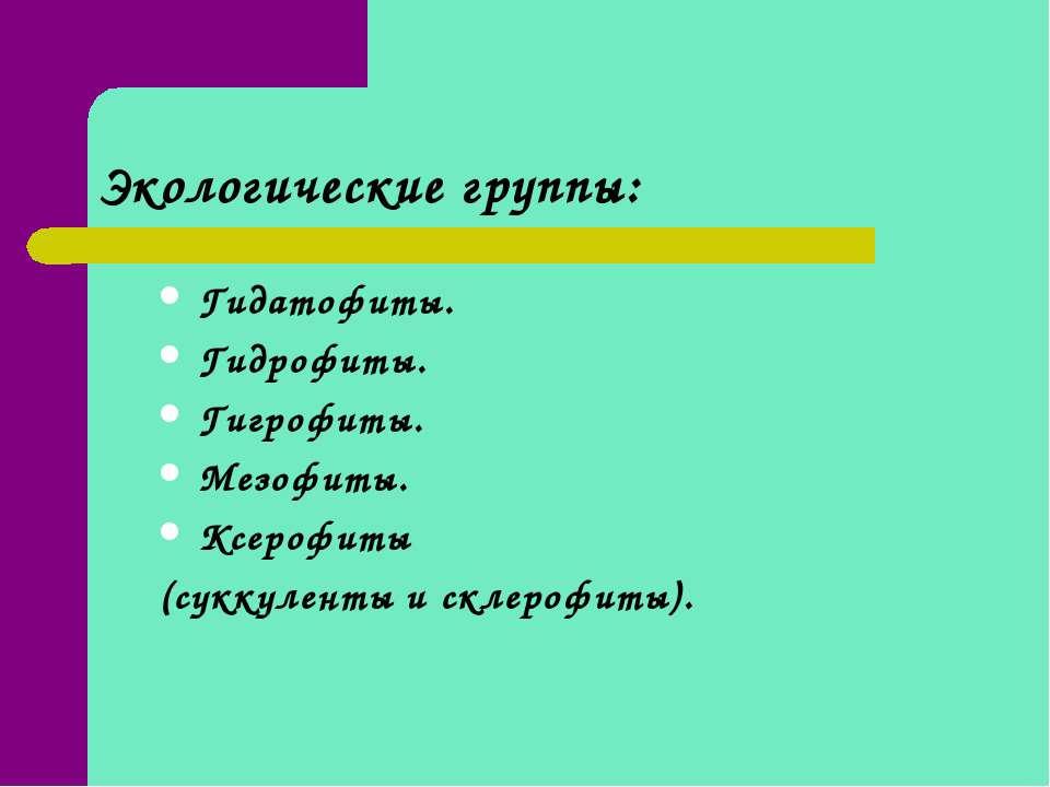 Экологические группы: Гидатофиты. Гидрофиты. Гигрофиты. Мезофиты. Ксерофиты (...