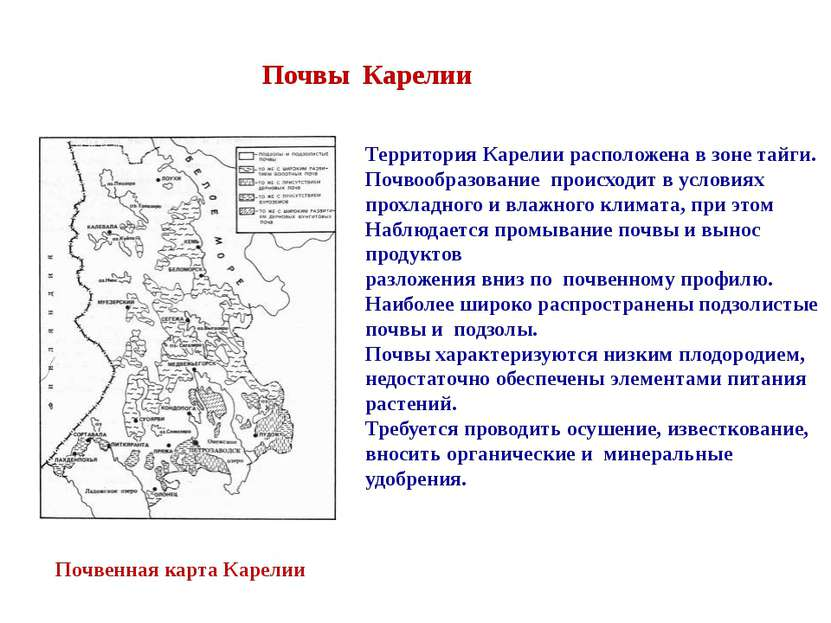 Почвы Карелии Территория Карелии расположена в зоне тайги. Почвообразование п...
